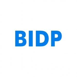 BIDP.com Domain name for sale