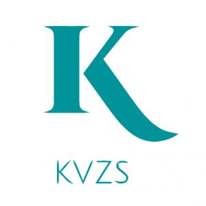kvzs domain name
