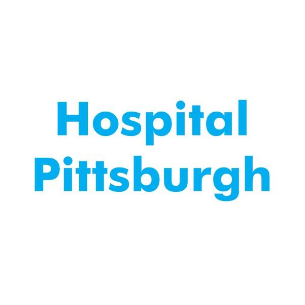 hospitalpittsburgh.com Domain name for sale